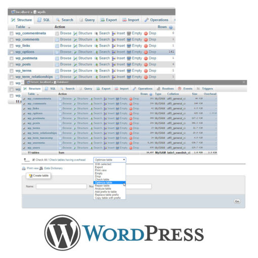 WordPress Database fix and optimize